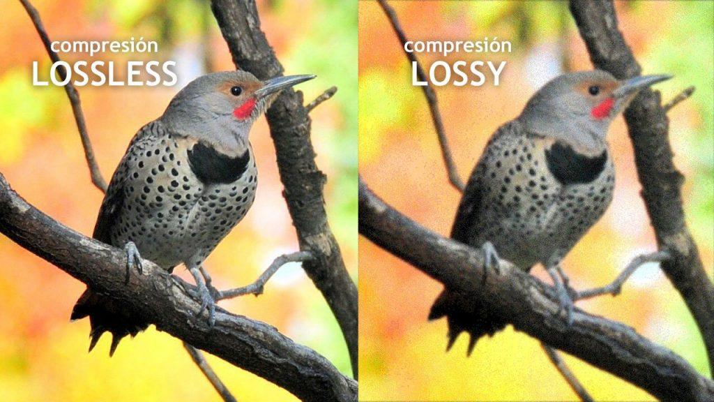 compresión formatos de imagen
