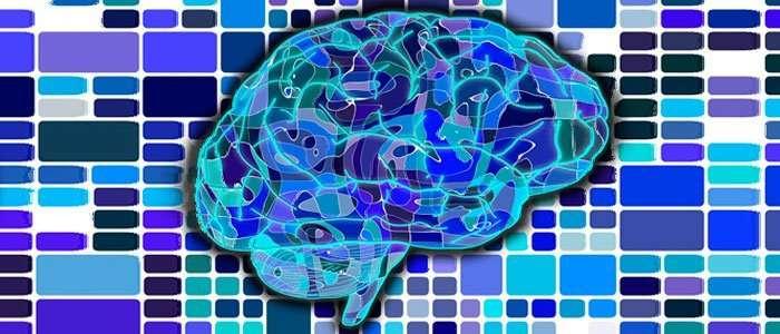 hacer ejercicio para oxigenar el cerebro