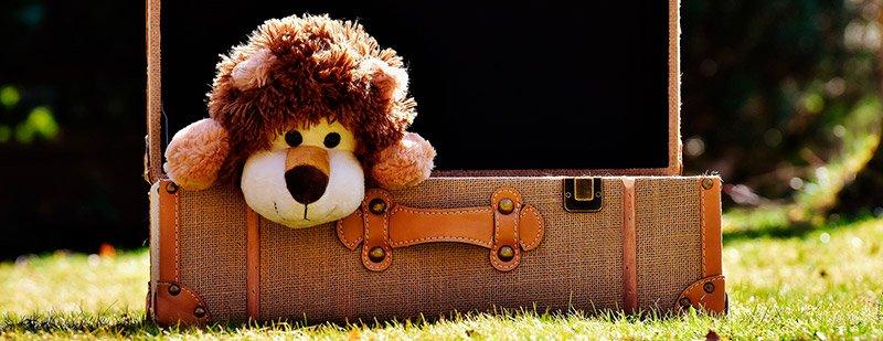 Peluche personalizado como compañero de viaje