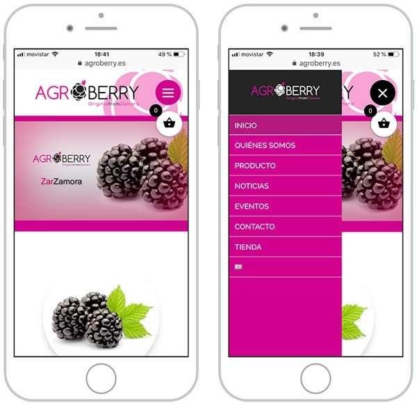 Web Agroberry en dispositivos móviles