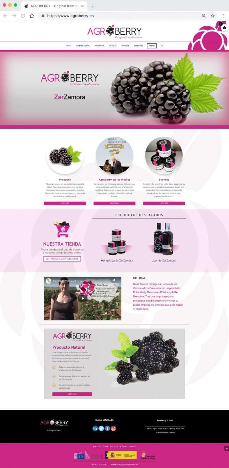 Página principal de Zarzamoras Agroberry