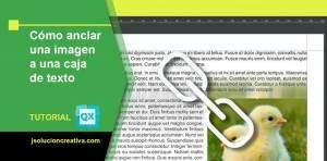 imagenes y texto en Quark