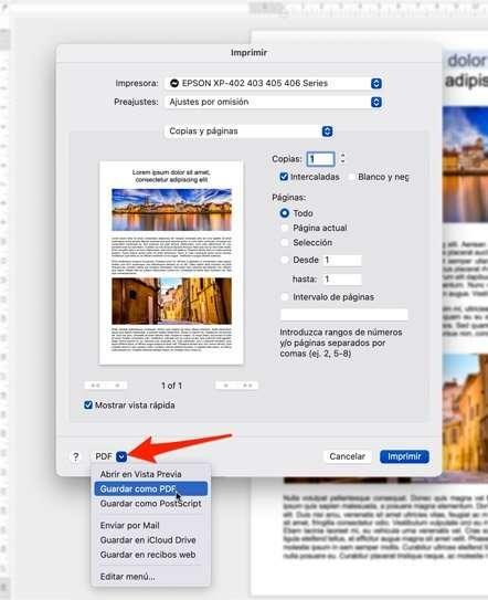 Opción de crear archivos como PDF